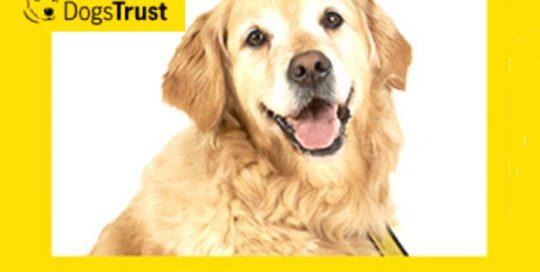 dogs trust